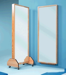 HAUSMANN PORTABLE MIRRORS