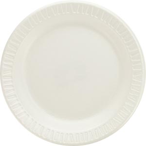 NETWORK SERVICES FOAM PLASTIC DINNERWARE